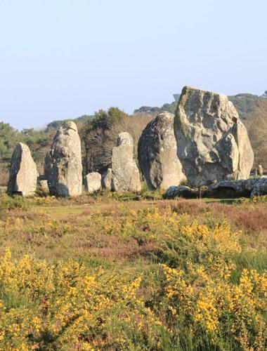 Camping Municipal La Falaise Locmariaquer golfe du Morbihan en Bretagne sud